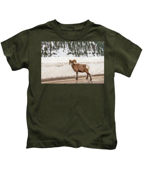 Bighorn Sheep Stopping Traffic Kids T-Shirt