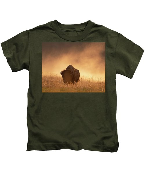 Bison In The Dust 2 Kids T-Shirt