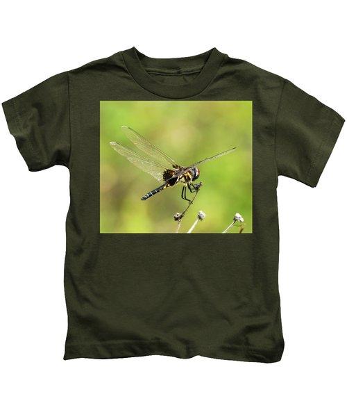Black Saddlebags Dragonfly Kids T-Shirt