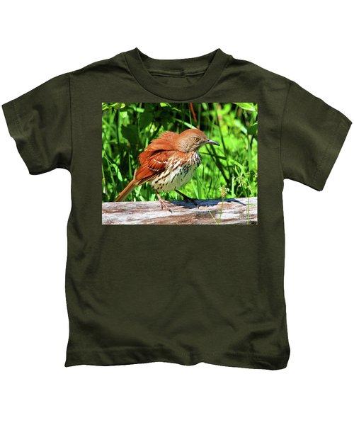 Brown Thrasher Kids T-Shirt