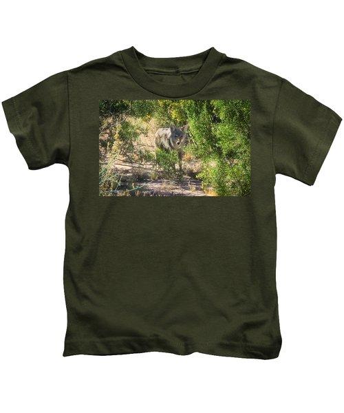 Cautious Coyote Kids T-Shirt