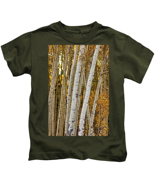 Colorado Aspens Kids T-Shirt