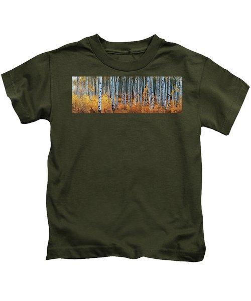 Colorado Autumn Wonder Panorama Kids T-Shirt