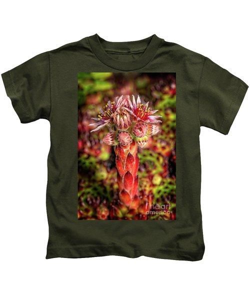 Common Houseleek Kids T-Shirt