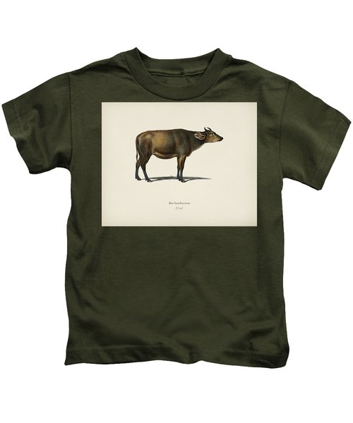 Cow  Bos Brachyceros  Illustrated By Charles Dessalines D' Orbigny  1806-1876  Kids T-Shirt