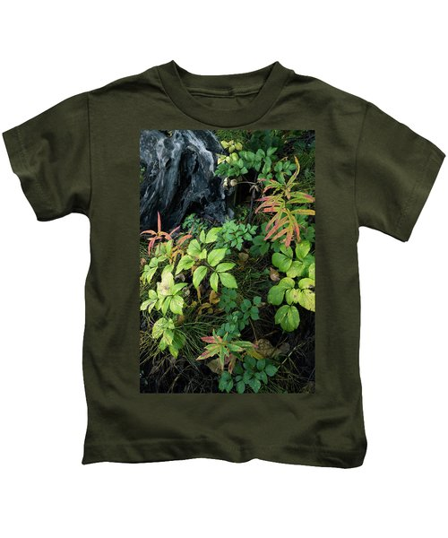 Forest Floor In Early Autumn Kids T-Shirt