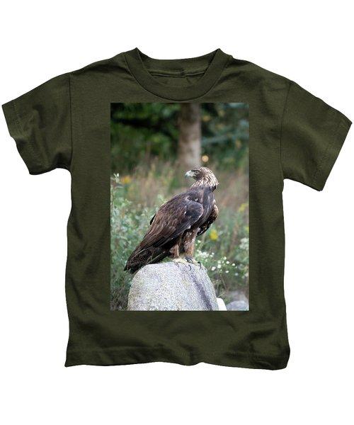 Golden Eagle On Rock 92515 Kids T-Shirt