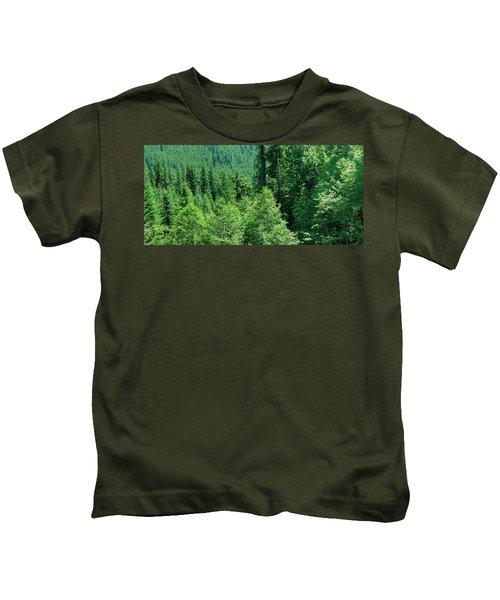 Green Conifer Forest On Steep Hillside  Kids T-Shirt