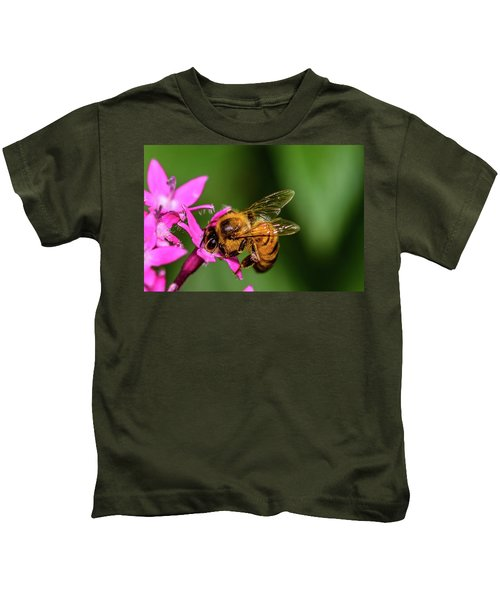 Honey Bee Kids T-Shirt