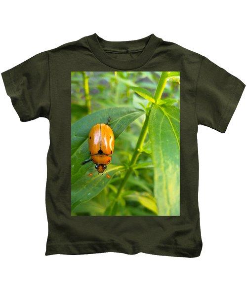 June Bug Kids T-Shirt