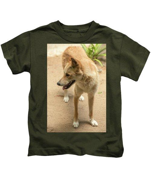 Large Australian Dingo Outside Kids T-Shirt