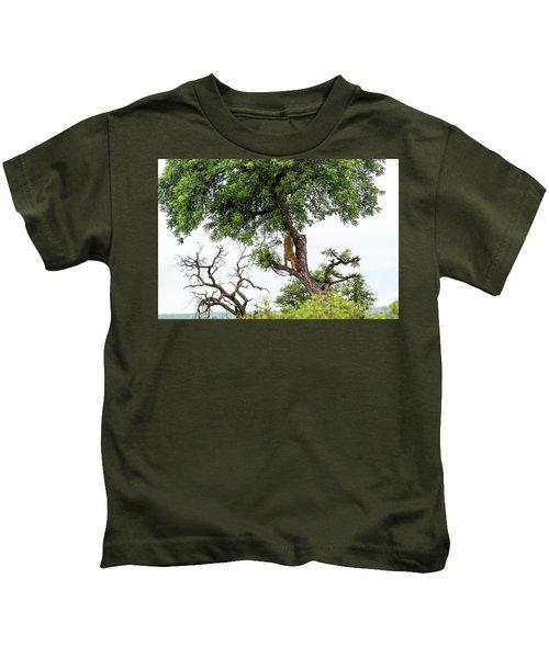 Leopard Descending A Tree Kids T-Shirt
