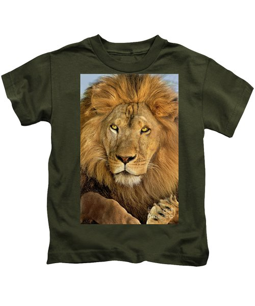 Male African Lion Portrait Wildlife Rescue Kids T-Shirt