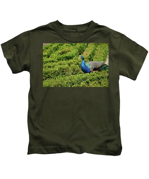 Male Peafowl In Retiro Park, Madrid, Spain Kids T-Shirt