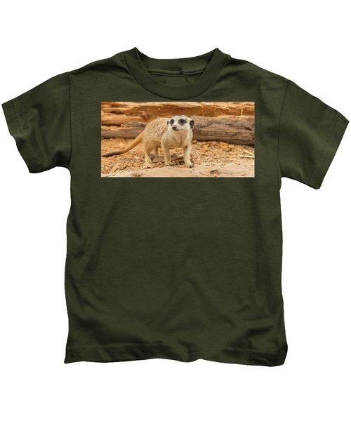 One Meerkat Looking Around. Kids T-Shirt
