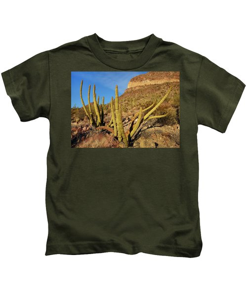 Organ Pipe Cactus, Ajo Mts, Organ Pipe Kids T-Shirt