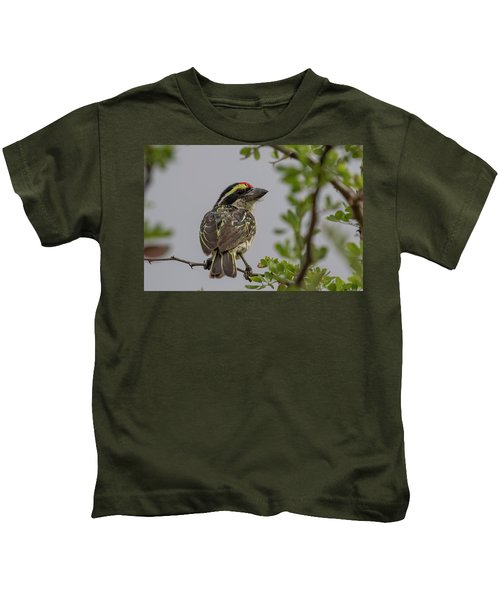 Red-fronted Barbet Kids T-Shirt