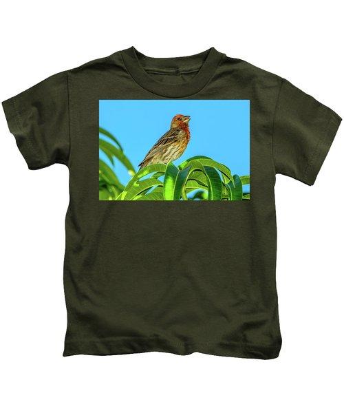 Singing House Finch Kids T-Shirt
