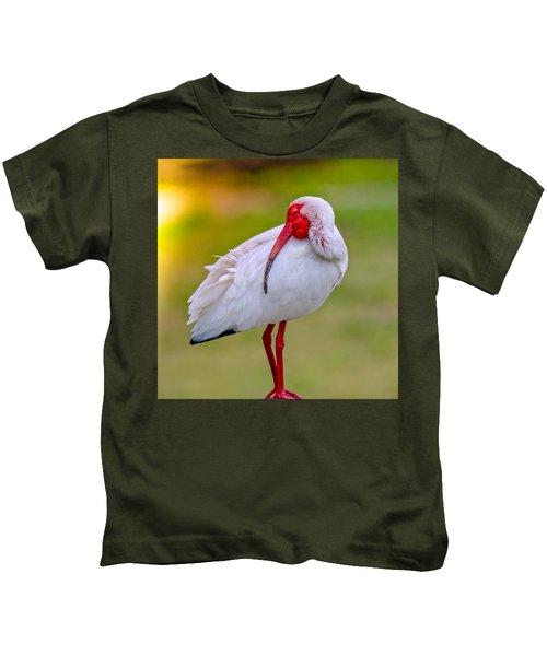 Sleepy Ibis Kids T-Shirt