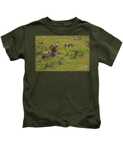 The Resting Big Horn Sheep Kids T-Shirt
