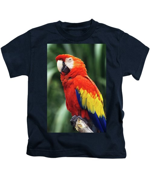 1990s Scarlet Macaw Ara Macao Looking Kids T-Shirt