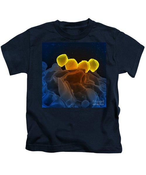 Streptococcus Pyogenes Bacteria Sem Kids T-Shirt