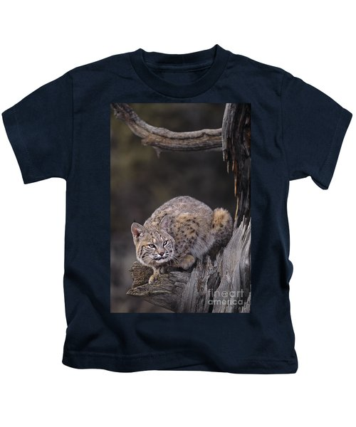 Crouching Bobcat Montana Wildlife Kids T-Shirt