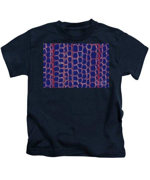 Larch Tracheids Kids T-Shirt
