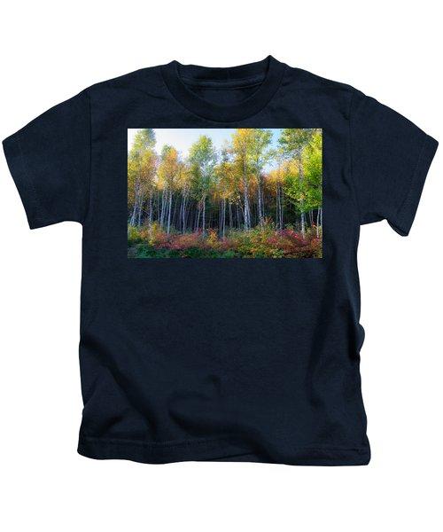 Birch Trees Turn To Gold Kids T-Shirt