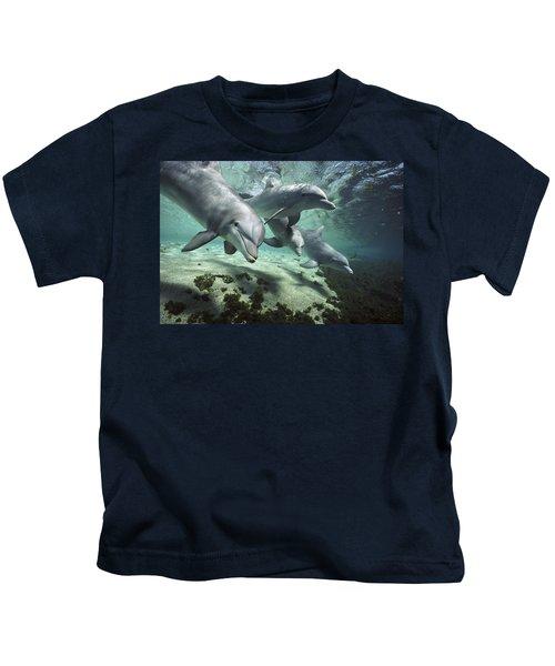 Four Bottlenose Dolphins Hawaii Kids T-Shirt