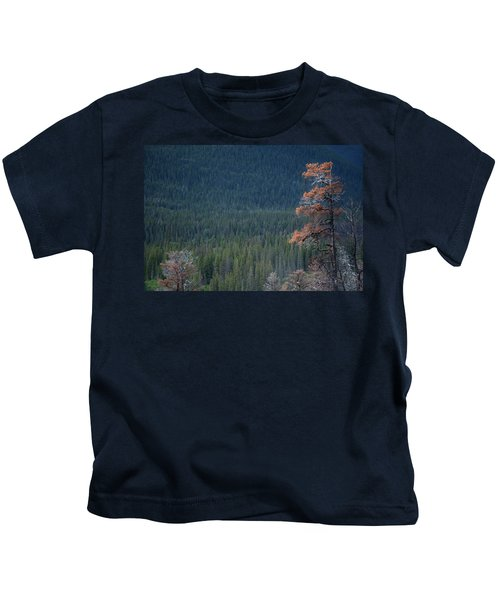 Montana Tree Line Kids T-Shirt