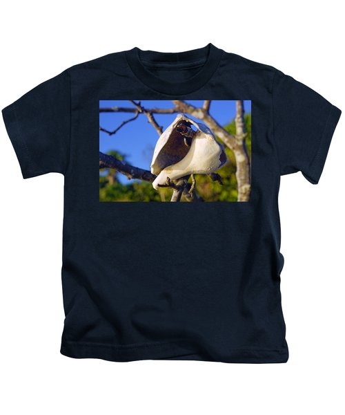 Shell On Brach Of Mangrove Tree At Barefoot Beach In Napes, Fl Kids T-Shirt