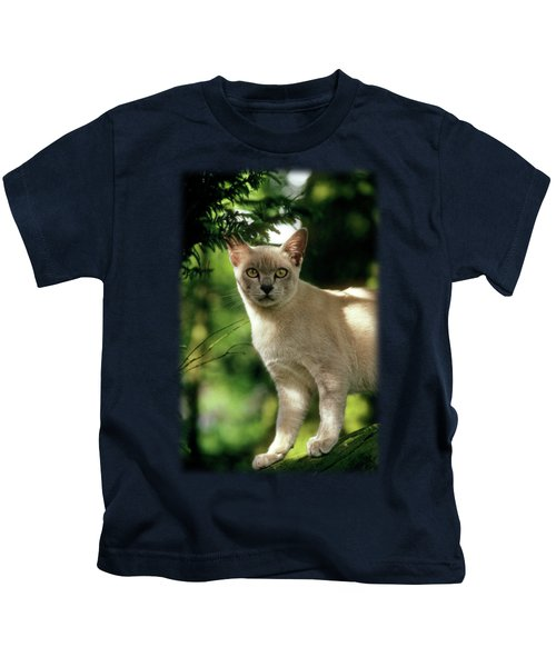 Wilham Kids T-Shirt by Jon Delorme