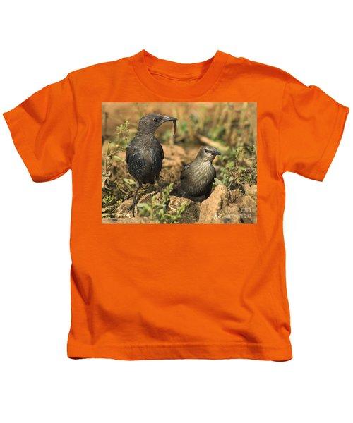 Starling Estornino Kids T-Shirt by Guido Montanes Castillo