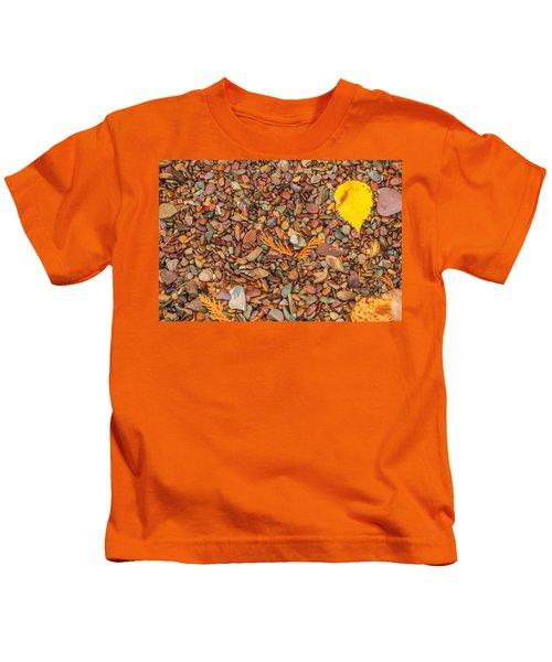 Beach Pebbles Of Montana Kids T-Shirt