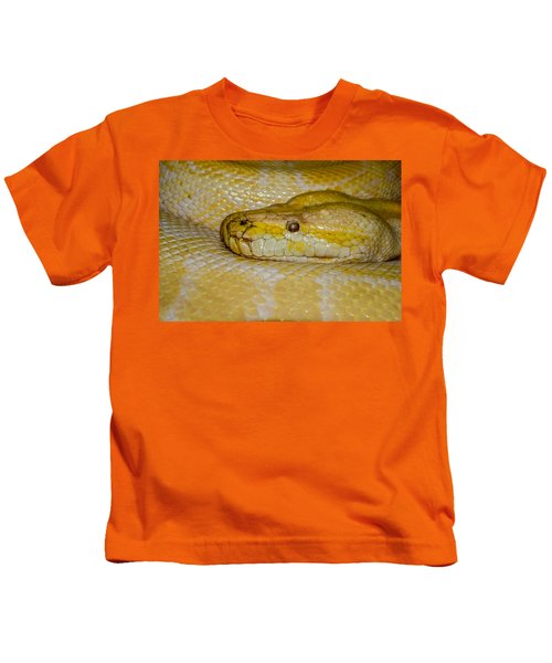 Burmese Python Kids T-Shirt