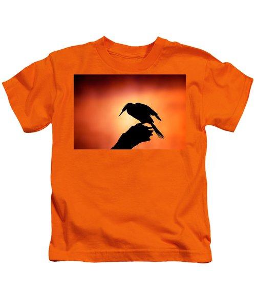 Darter Silhouette With Misty Sunrise Kids T-Shirt