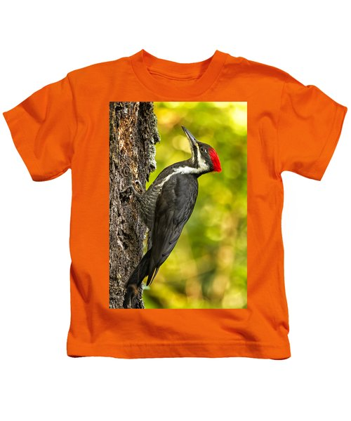 Female Pileated Woodpecker No. 2 Kids T-Shirt
