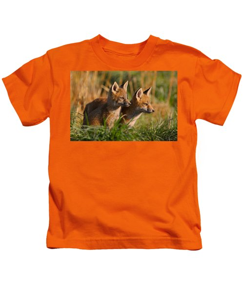 Kids T-Shirt featuring the photograph Fox Cubs At Sunrise by William Jobes