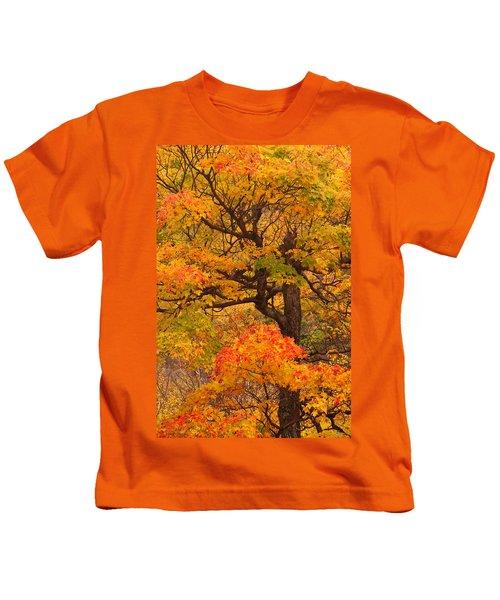 Shapely Maple Tree Kids T-Shirt