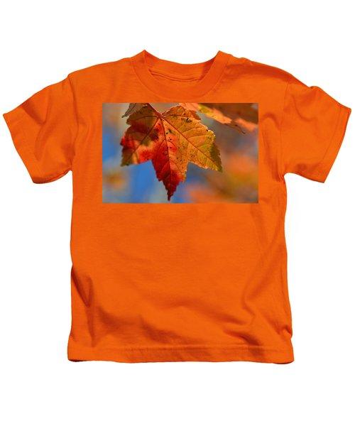 ...through The Autumn Light Kids T-Shirt