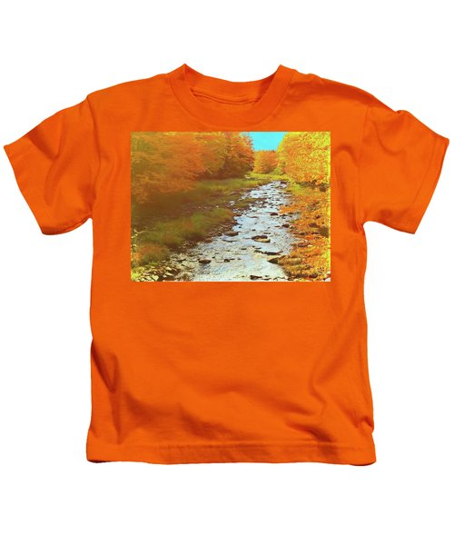 A Small Stream Bright Fall Color. Kids T-Shirt