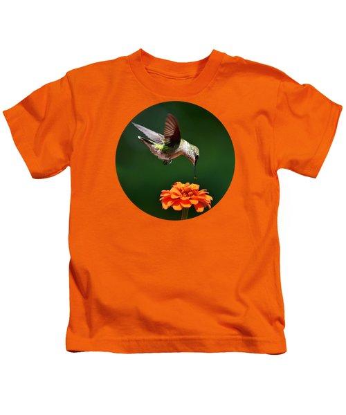 Hummingbird Bullseye Kids T-Shirt by Christina Rollo