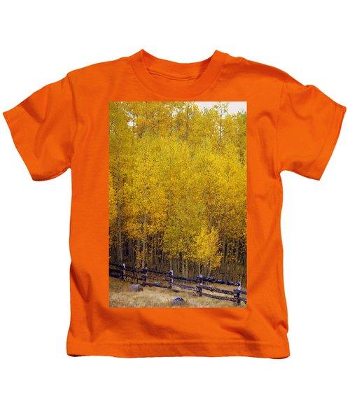 Aspen Fall 2 Kids T-Shirt