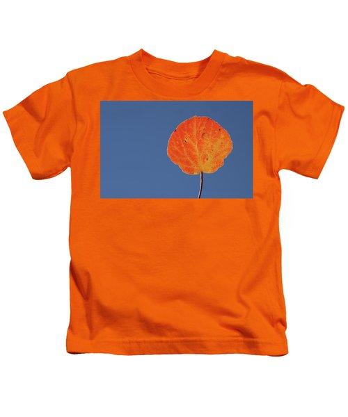 Aspen Leaf 1 Kids T-Shirt