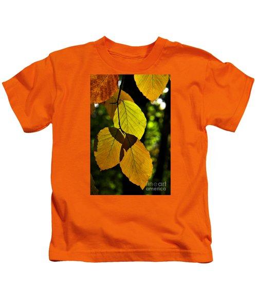 Autumn Beech Tree Leaves Kids T-Shirt