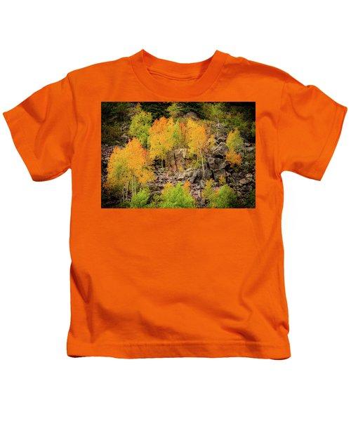 Autumn In The Uinta Mountains Kids T-Shirt