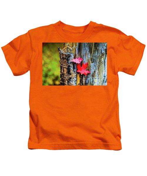 Autumn Silence Kids T-Shirt