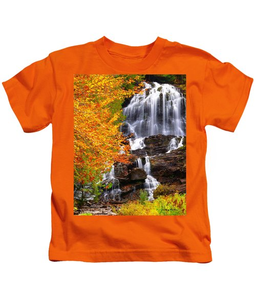 Beaver Brook Falls Kids T-Shirt