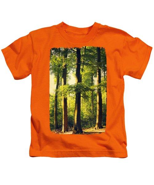 Beech Tree Forest In Evening Light Kids T-Shirt